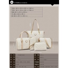 5 in 1 women bag (1 set)